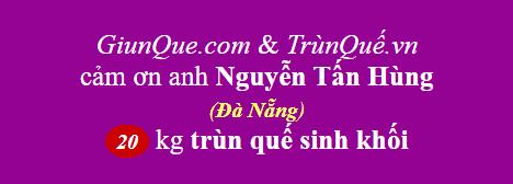 Trùn quế Đà Nẵng