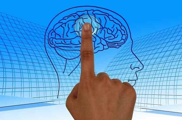 human brain limitations