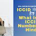 ICCID नंबर क्या है? [What Is an ICCID Number? in Hindi]