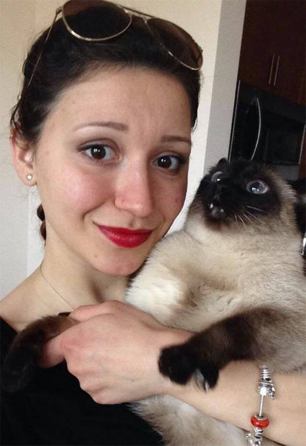 Cats Don't Really like to Take Selfies