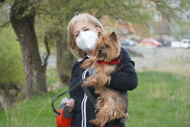 Dogs identify Corona Virus