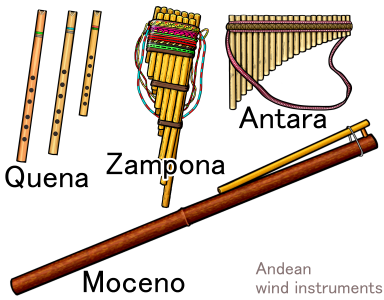Andean wind instruments