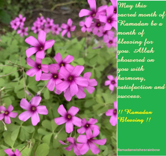Ramadan Blessing Greeting 4