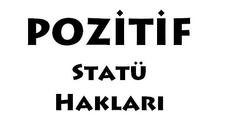Pozitif statü hakları hangileridir?