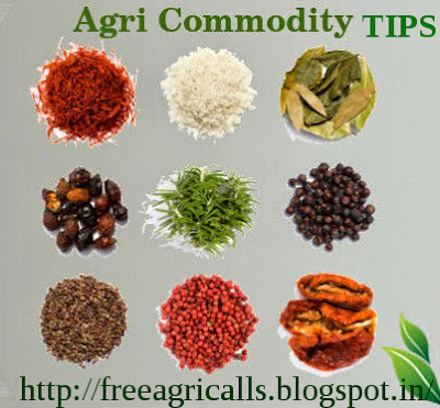 Agri commodity calls, Agri Commodity Tips, Agri futures Tips, Chana Tips, Free  Commodity Tips, Free Agri Tips, Jeera Tips, MCX Tips Services, Turmeric Tips,