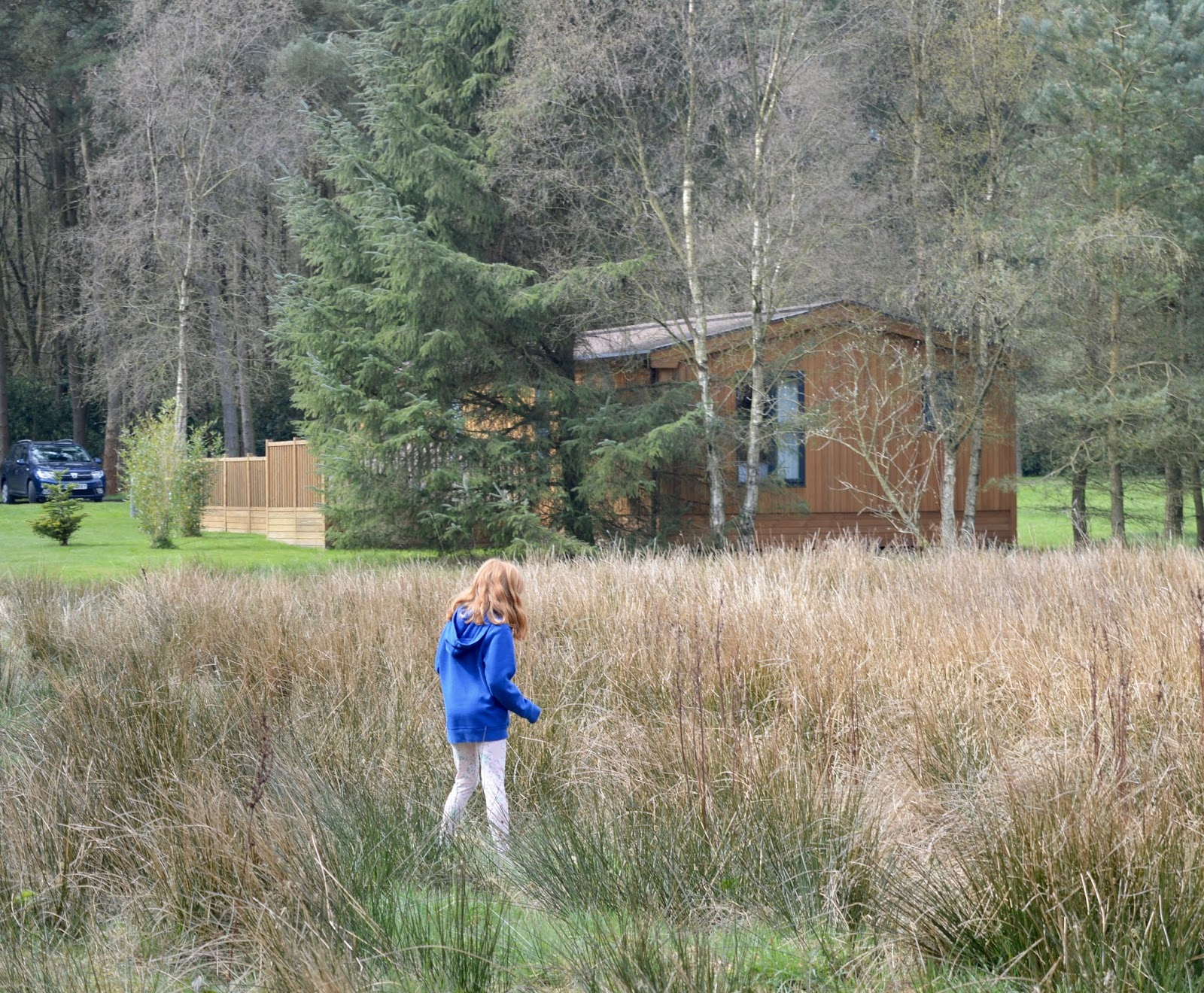 A Review of Darwin Forest & The Peak District with Tweens  - The Meadows area