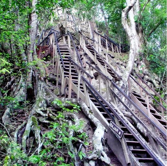 En los bosques alrededor de Tikal hay varias ciudades antiguas grandes, pero no están despejadas de la selva, y debes llegar a pie. La ciudad antigua más interesante e inaccesible, llamada El Mirador, se encuentra cerca de la frontera con México.