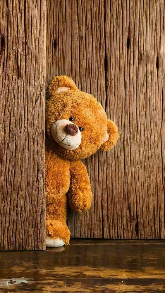 Sweet Teddy pics, cute teddy bear photos, teddy for valentine day