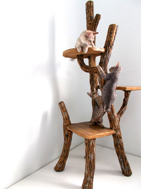 Cat Tree 7