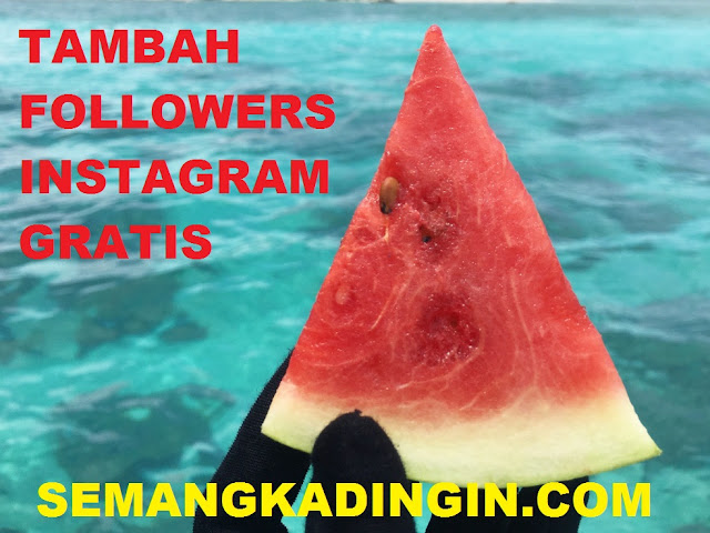 Semangka Dingin Followers - Situs Penambah Follower IG Gratis