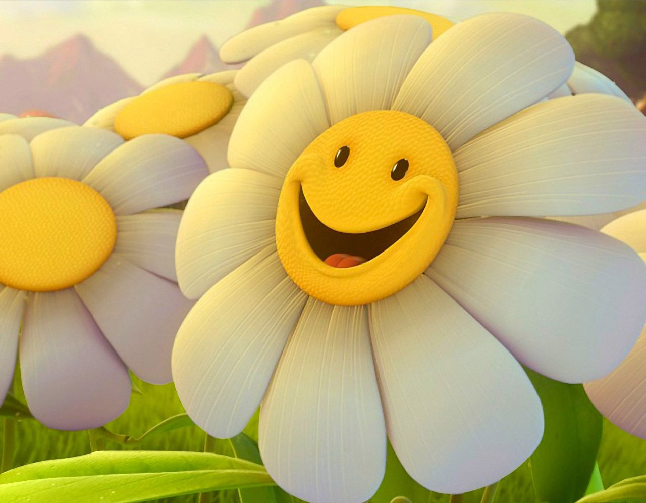 SUJITH SPOT:::::: Cute Flowers