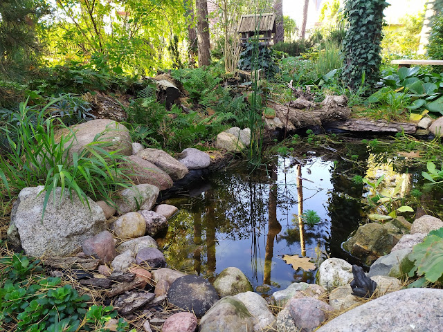 Jesienny ogród, ogród leśny