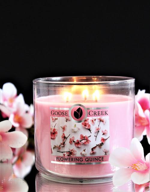 flowering quince goose creek, goose creek candle, goose creek france, bougie 3 meches, flowering quince avis, bougie parfumée, parfum d'ambiance fleuri, floral candle, flowering quince candle, blog bougie parfumée