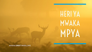 Foggy forest background deers happy new year in kenyan language