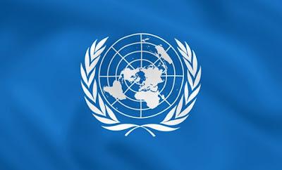 modelo de las naciones unidas comité