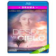 Desde mi cielo (2009) BRRip 720p Audio Dual Latino-Ingles
