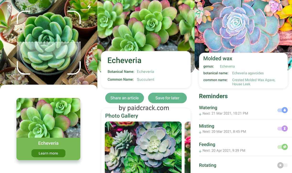 Nature ID - Identify plants, flowers, trees & leaves Mod Apk