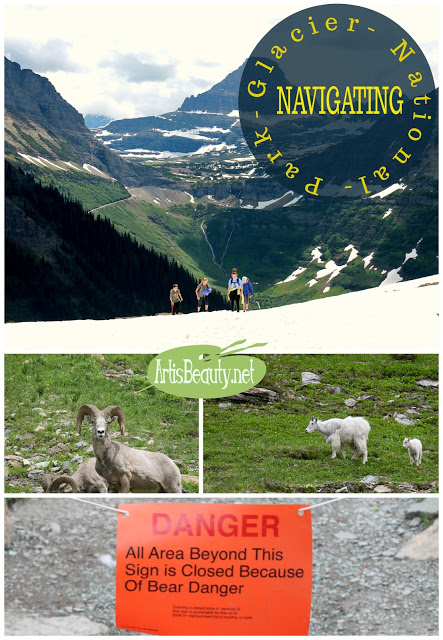 https://www.artisbeauty.net/2017/06/tips-on-navigating-glacier-national-park.html