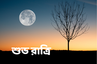 good night images in bengali hd