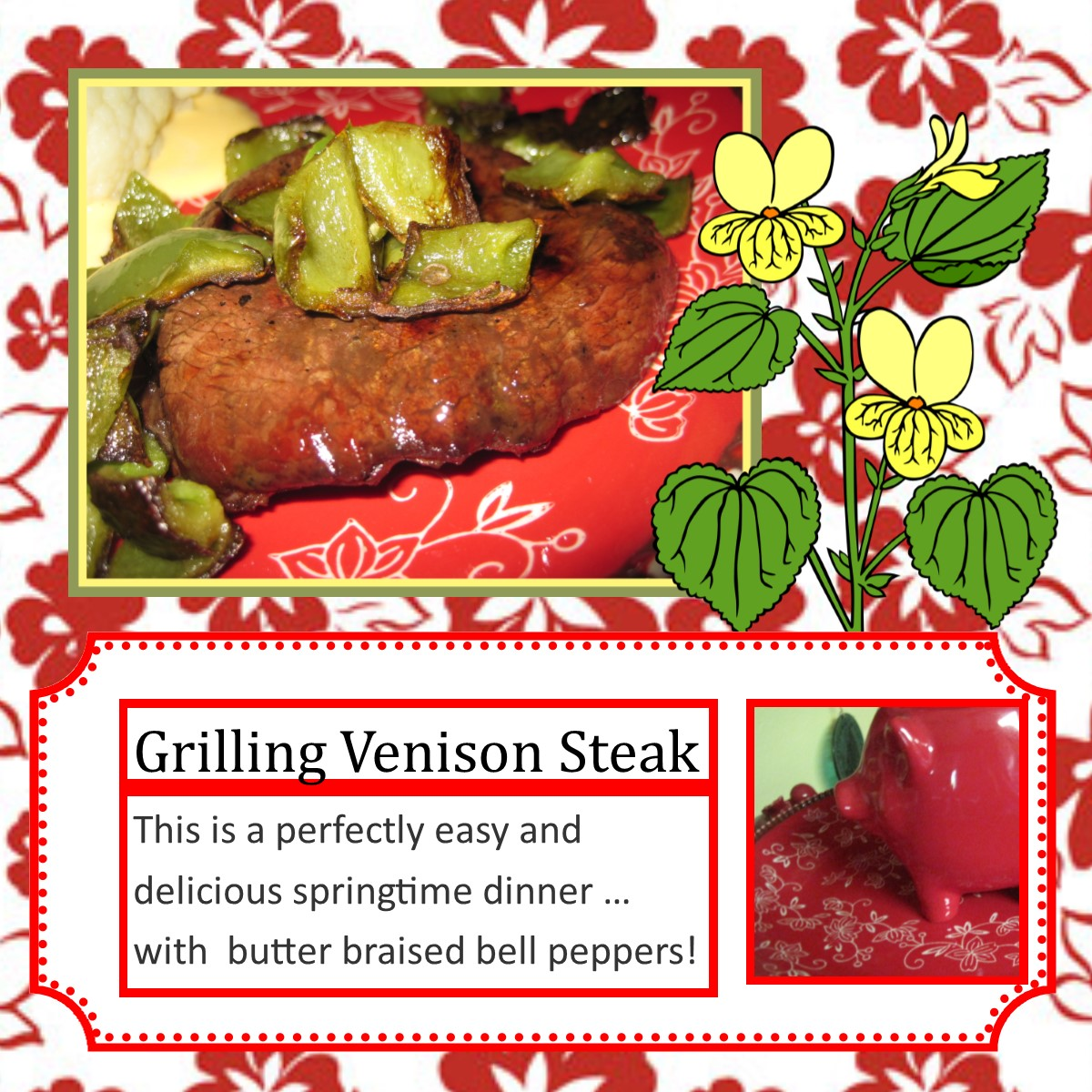 how to cook venison steak on the grill