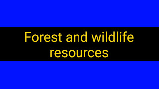 Forest and Wildlife Resources