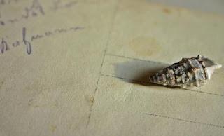 Puisi Cinta Kenangan Indah Karya Nahdiani