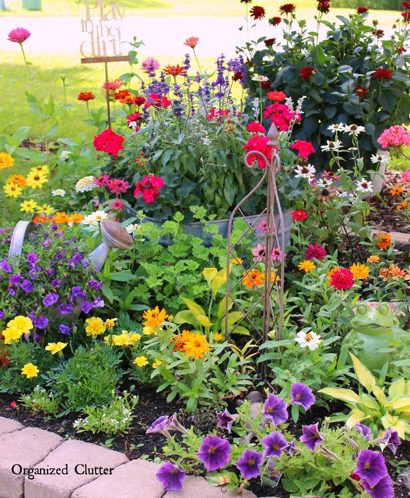 Cottage Flower Gardens: YARD OF FLOWERS 2015 Garden Tour