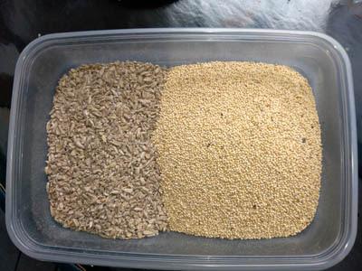 Photo of bulk bird seed