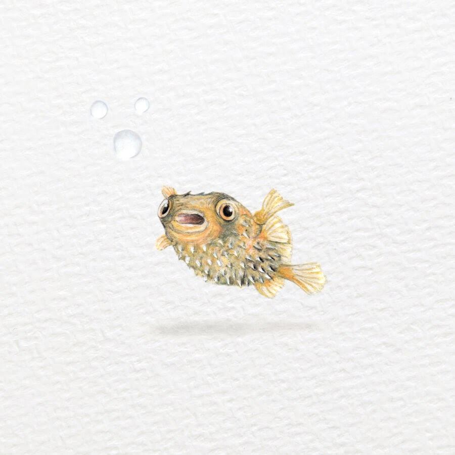 03-Porcupine-fish-Frank-Holzenburg-www-designstack-co