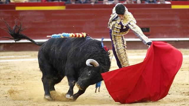 Miles de españoles gritan: ¡Basta ya! ¡No más corridas de toros!
