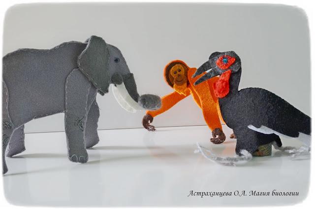 palchikovyj-teatr-orangutan-slon-kafrskij-voron