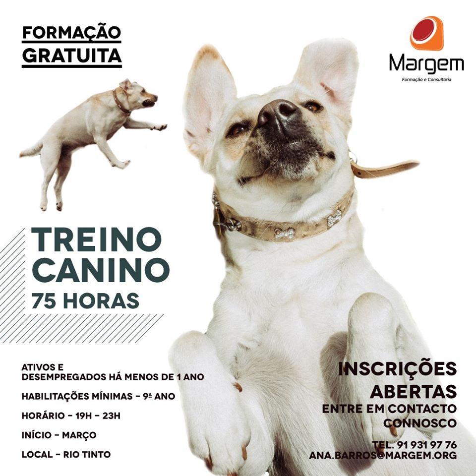 Curso gratuito de Treino Canino em Rio Tinto