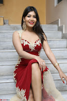 Rachana Smit in Red Deep neck Sleeveless Gown at Idem Deyyam music launch ~ Celebrities Exclusive Galleries 024.JPG