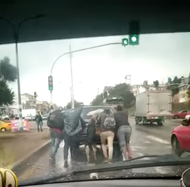 They Recorded A Solidarity Dog Who Got bent Help Push His Owner's Damaged Car