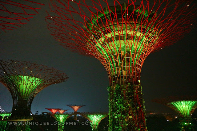 Supertree Glove Gardens By The Bay Singapore