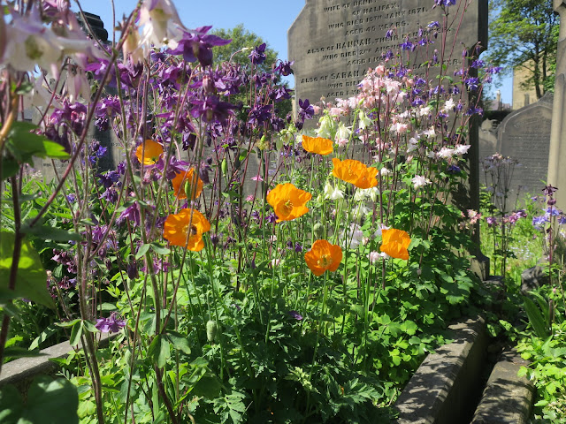 Flowers on graves at Lister Lane Cemetery, Halifax, Calderdale, England