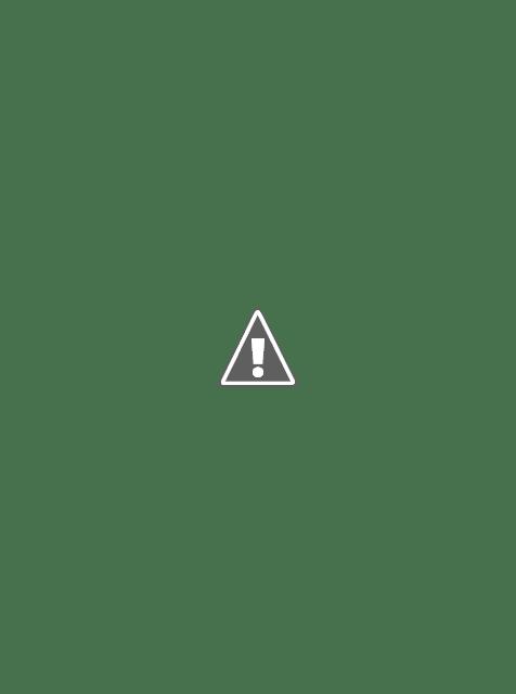 Rust Brown Belted Overcoat