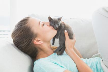 القطط وتربية القطط , القطط والاضرار علي البنات