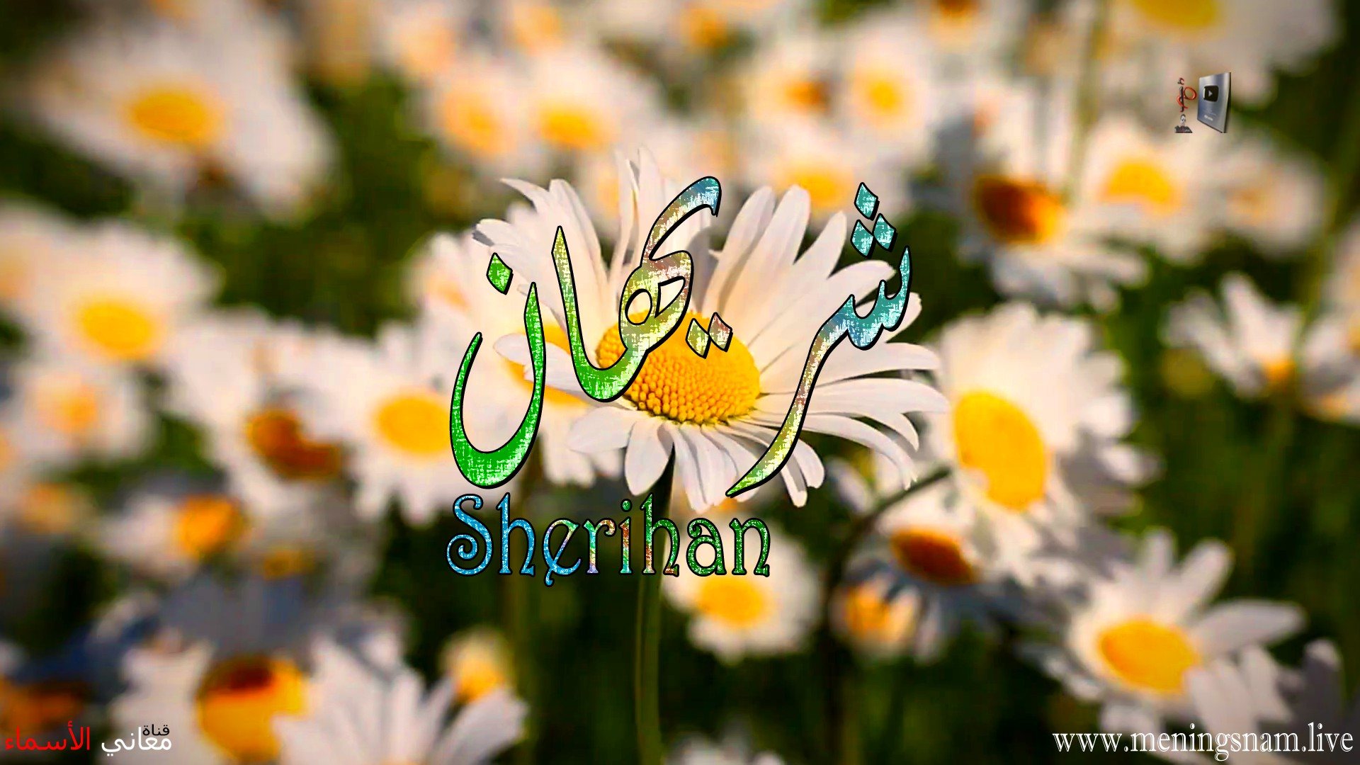 معنى اسم شريهان وصفات حاملة هذا الاسم Sherihan
