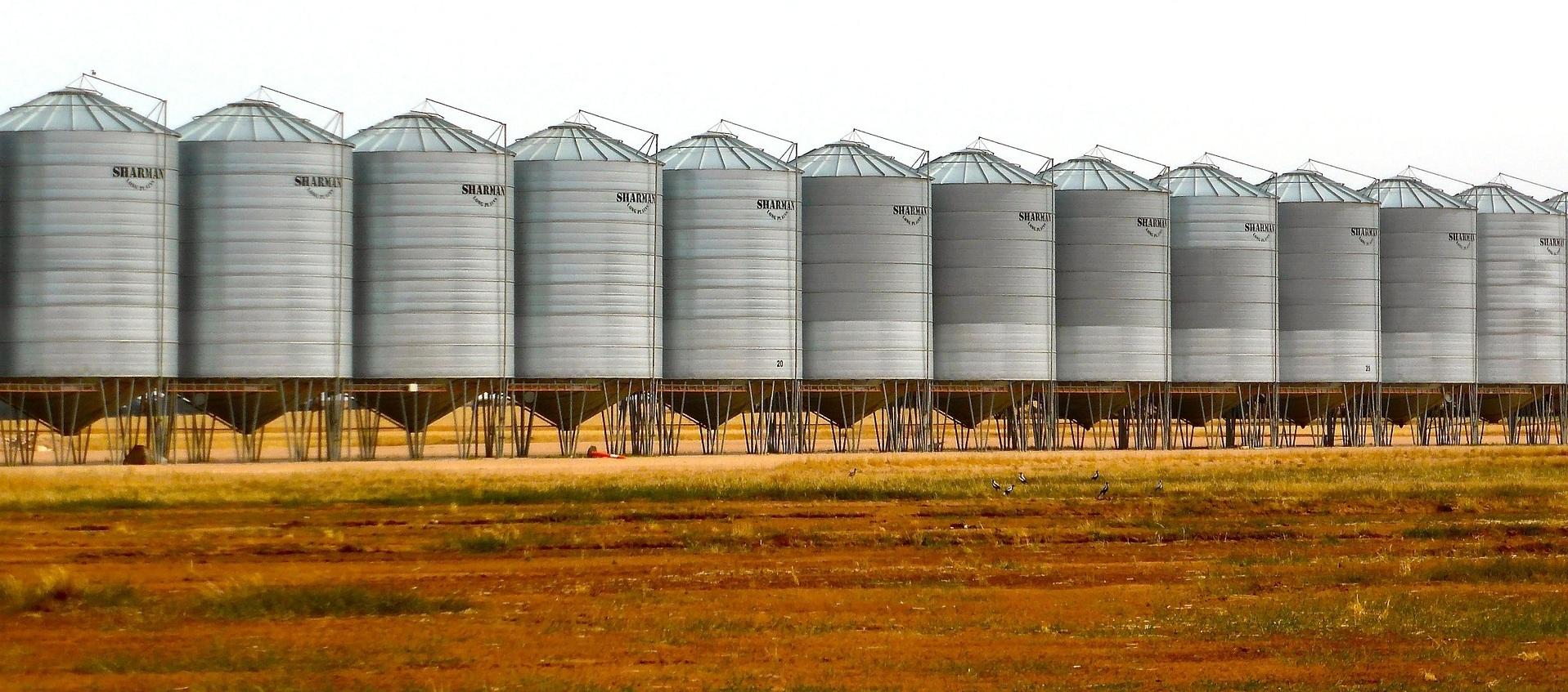 Food security gaining importance as Dubai food stuff trade crosses AED52 billion