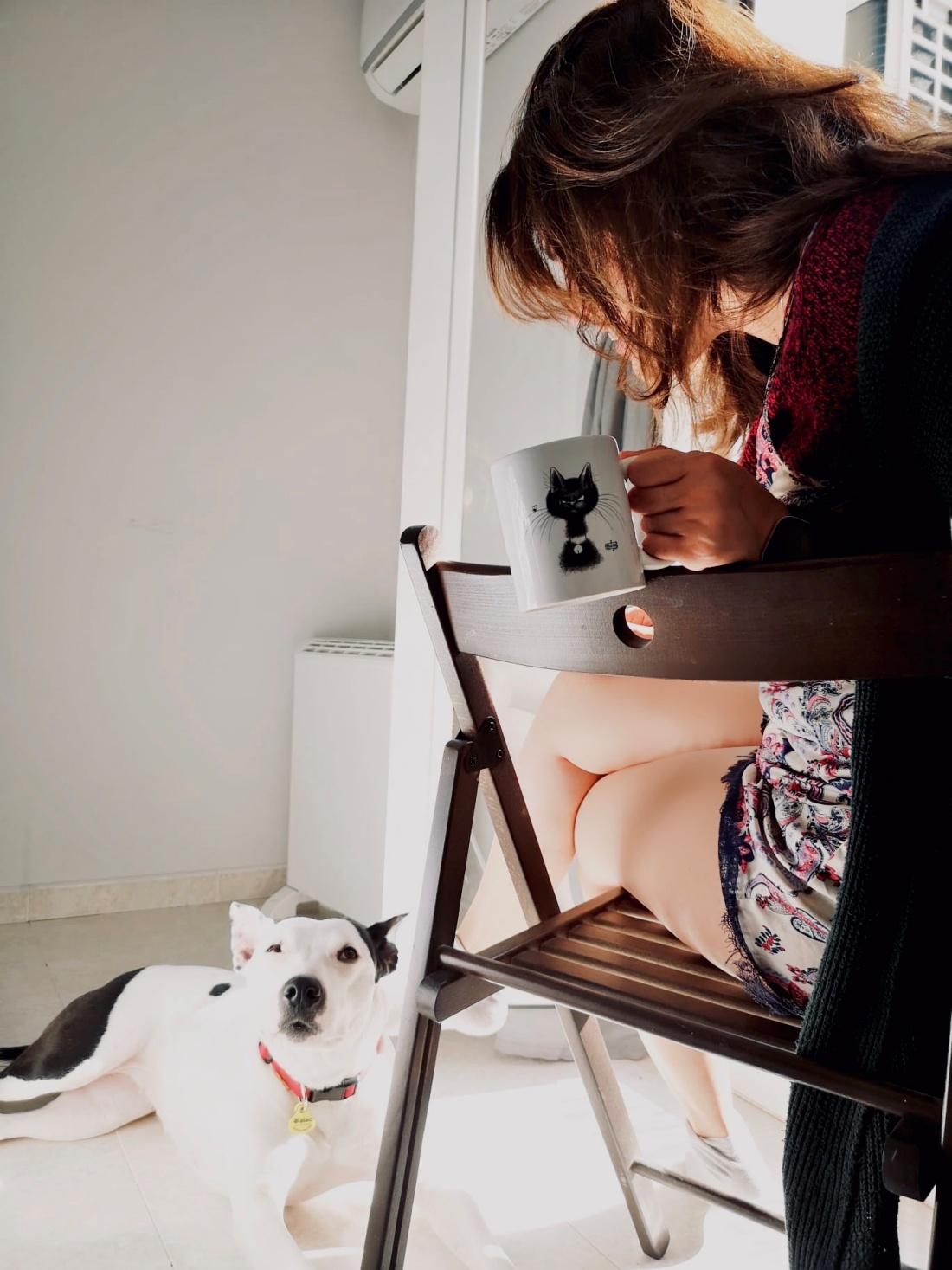 nuestras mascotas nos ayudan a lidiar con las emociones