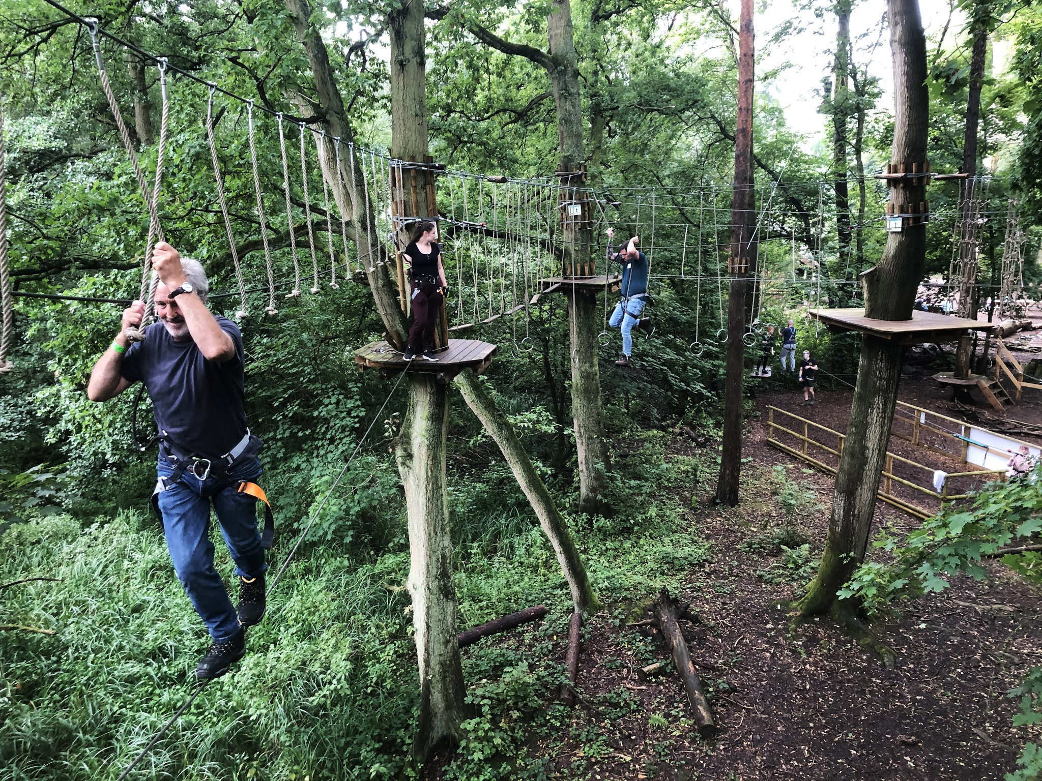 Several people working their way through the treetop obstacle course
