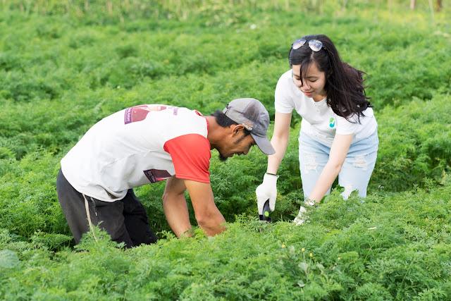 Masa Pandemi Corona, Startup Eden Farm Tetap Beroperasi