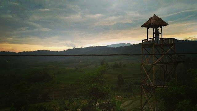 Menara Pandang Gardu Pandang Menjangan Subah