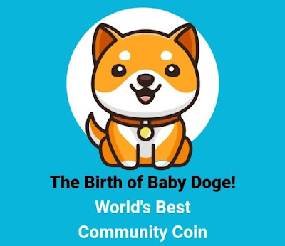 Mengetahui Alamat Contracts Baby Doge Coin