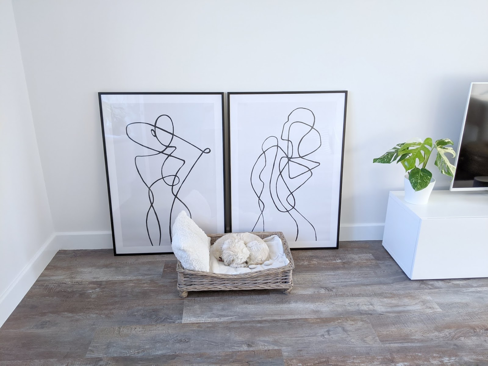 My Home Update - New Prints From Desino