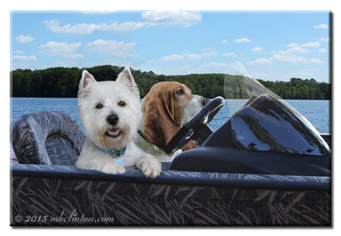 A Fish Tale boating with Bentley and Pierre