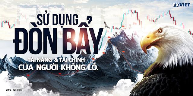 don bay tai chinh - copytrading