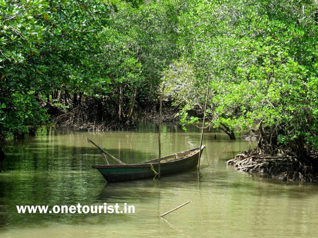 limestone caves in andaman