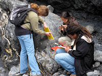 What Do Geologists Do?